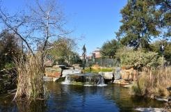 Nature Garden at Los Angeles County Natural History Musuem