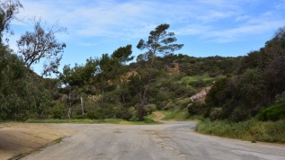 Closed section of Mt. Hollywood Drive in Griffith Park