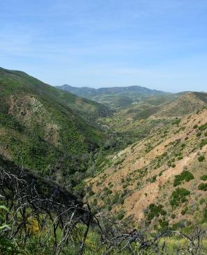 Canyon view in Rancho Sierra Vista/Satwiwa park
