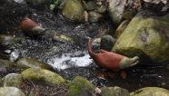 Salmon sculpture 'swimming' upstream