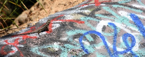 Lizard and Graffiti
