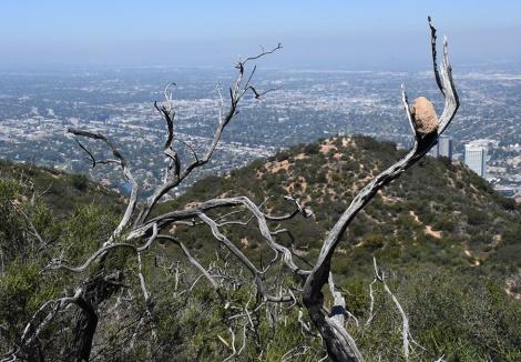 Rock overlooking San Fernando Valley