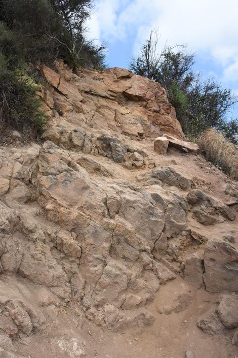 Aileen Getty Ridge Trail
