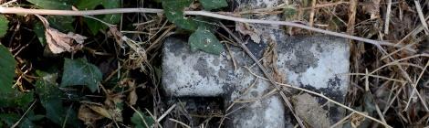 Concrete Chaparral